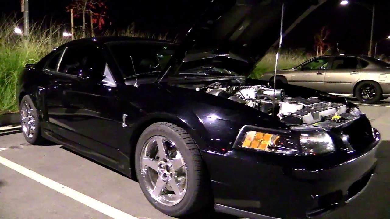 Terminator vs C5z, Cammed C6, 5th Gen 1LE and SS Camaro's