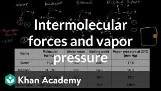 Intermolecular forces and vapor pressure