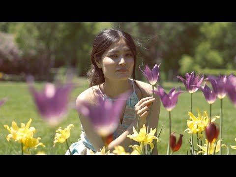 New Tibetan Song of 2019    Zatsey    Official Music Video    Tashi Phuntsok    Dharma Group
