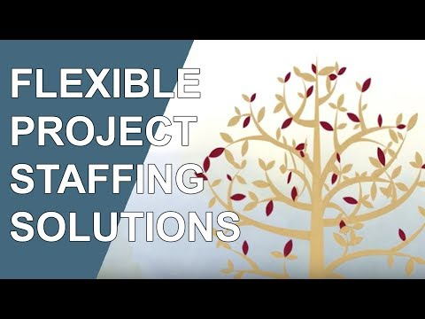Flexible Project Staffing Solutions (Accounting & Finance)
