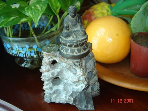 Buddha Statue: Collector's Antique