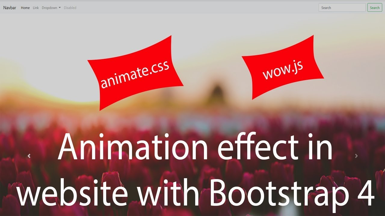 Download Animation Effects in Website with Bootstrap 4