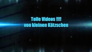 Blockbuster Die Unverbesserlichen bald auf YouTube!