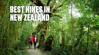 Best day hikes and short walks