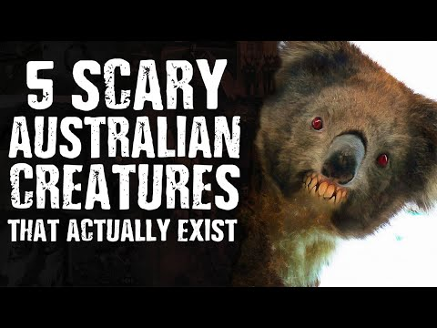 5 SCARY Australian CREATURES That Actually Exist
