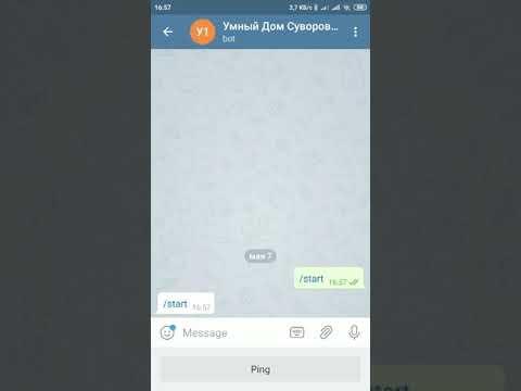 Majordomo. Получение снэпшотов с камер видеонаблюдения при помощи бота в Telegram
