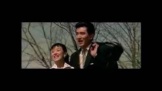 高倉健さんは、美空ひばりさんと10数本の映画で共演しています。役どこ...