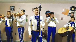 Mariachi Juvenil Alazán - Juan Colorado (Amalia Mendoza)