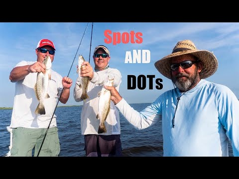 Dots And Spots In Big Lake