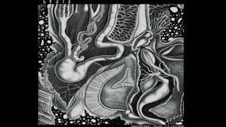 cv313 - Sella Bay (Unreleased)