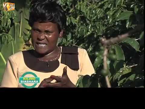 Kilimo Biashara: Organic Bio-Deposit