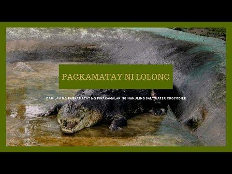 KMJS: Pagkamatay Ni Lolong, Isa Pa Ring Misteryo