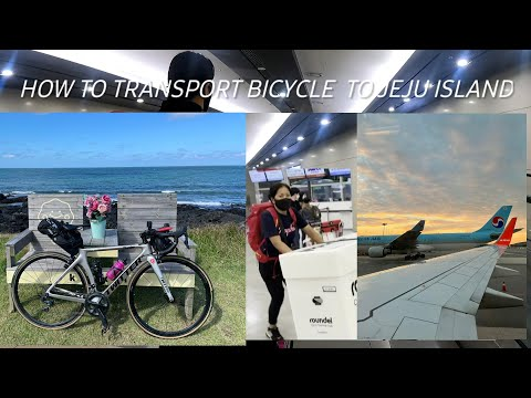 HOW TO TRANSPORT BICYCLE  TO JEJU ISLAND   raoundel   라운델   #traveladventure #twitterbike thumbnail