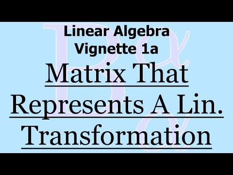 Linear Algebra Vignette 1a: Matrix Representation of a Linear Transformation