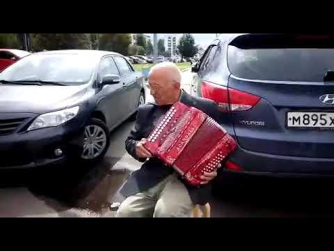 Евгений Петров ,играет на гармони Scandalli