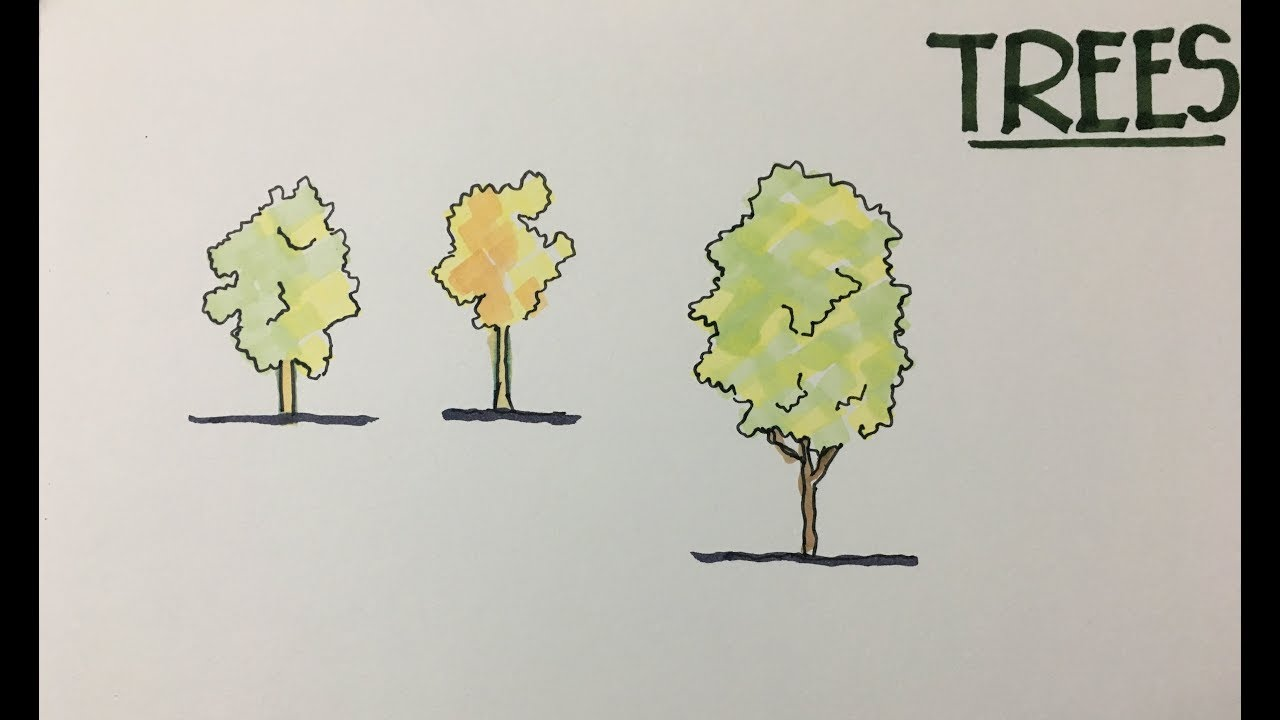 Simple Architecture Tree How To Draw Trees With Alcohol Markers