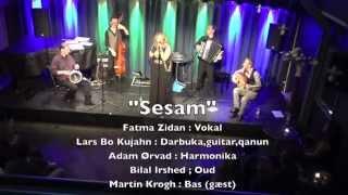 """Sesam "" m. Fatma Zidan LMS 2015"