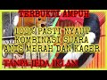 Pancingan Terapi Kacer Agar Gacor Terapi Kacer Macet Bunyi  Mp3 - Mp4 Download