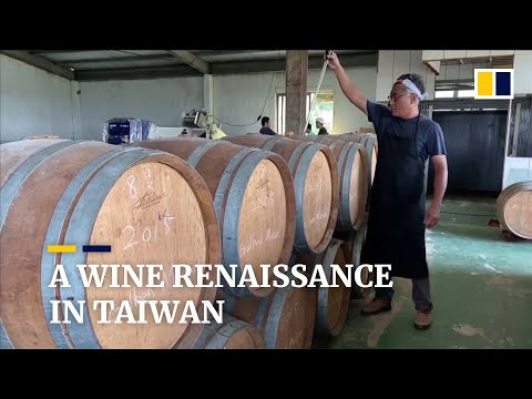 wine article Taiwanese Winemaker Plans Wine Revolution With Awardwinning Homegrown Wines