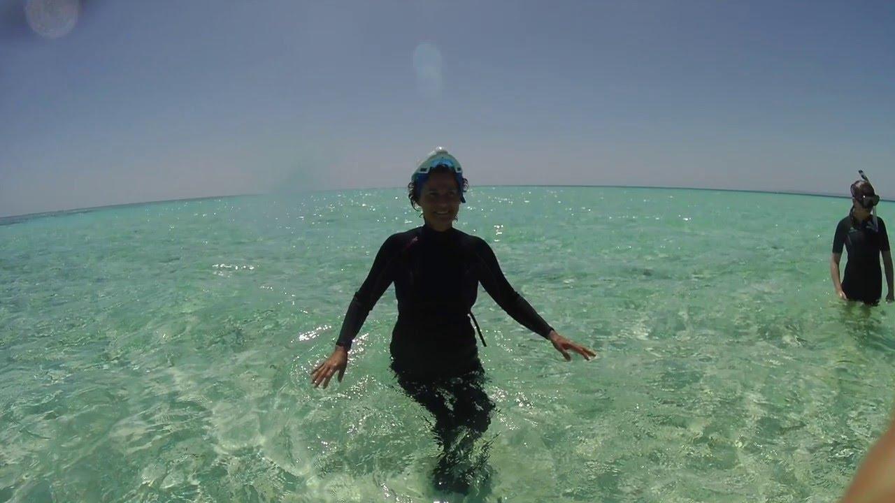 Les dauphins et Laurence Dujardin à SATAYA en EGYPTE, bande ... - Laurence Dujardin