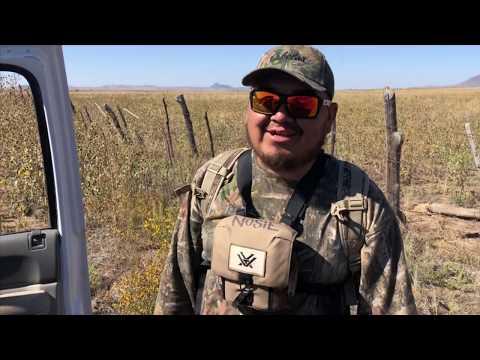 Deer Hunting On The San Carlos Reservation