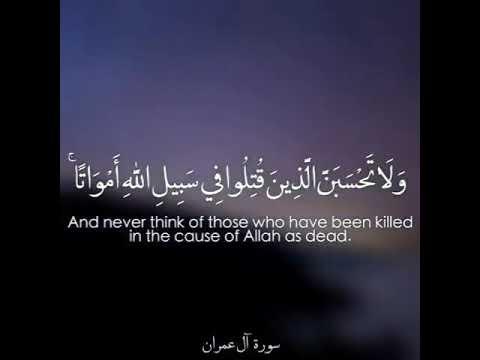 تحميل اية ولا تحسبن الذين قتلوا mp3