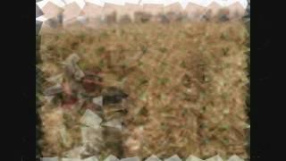 Dab Wah Sajna Raj Kha Sajna {Pakistani Song} by Alam Lohar