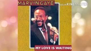 Marvin Gaye-