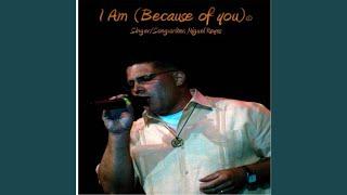 Video I Am (Because of You) (Radio Mix) download MP3, 3GP, MP4, WEBM, AVI, FLV Oktober 2018