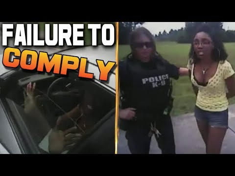 America's Dumbest Criminals (Failure to Comply) Female With Attitude Gets Glass Shattered By Police