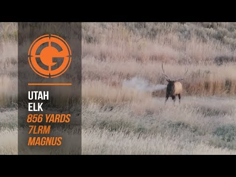 Huge Bull Elk Gives up the Ghost at 856 Yards - Plus A Surprise...Wait For It!