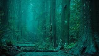 「熊野路へ」坂本冬美 cover harukaraharu