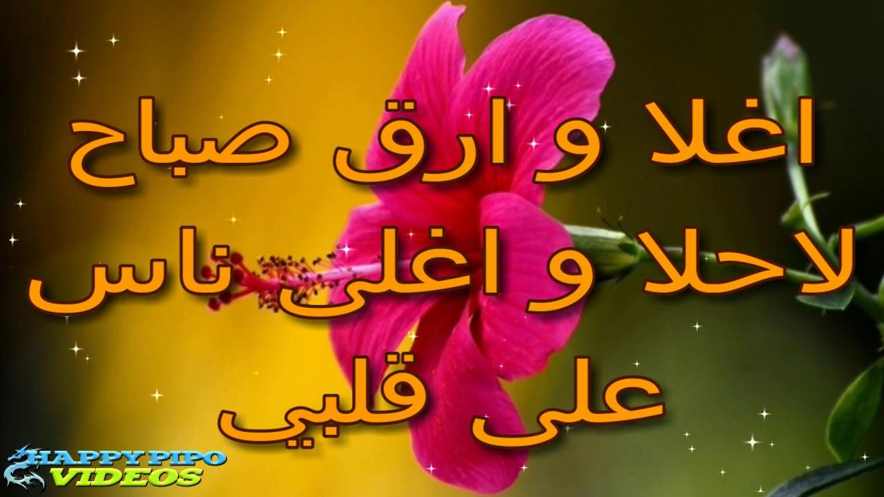 7803aad9d أجمل كلمات وأدعية الصباح أحلى إطلالة صباح مشرق بوجوه الأحبة ...