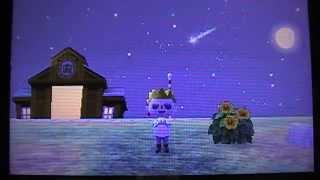 Animal Crossing New Leaf - Les étoiles filantes
