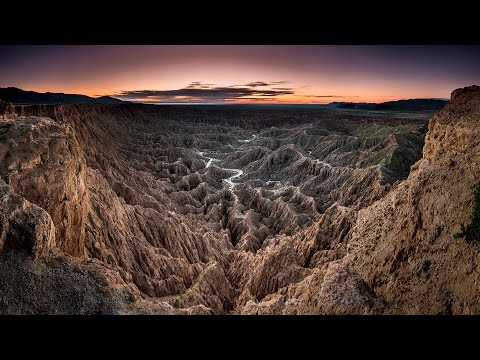 Landscape Photography...Desert Monsters and Wild Flowers