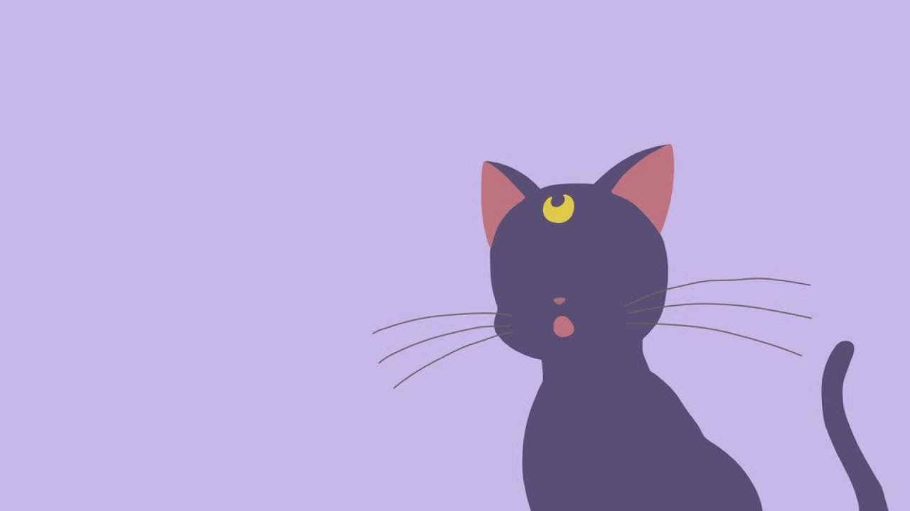 обои на телефон сейлормун котик