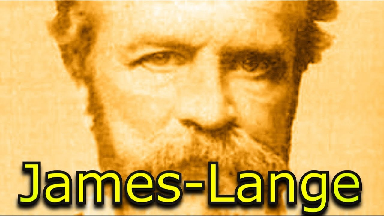 example of the james lange theory