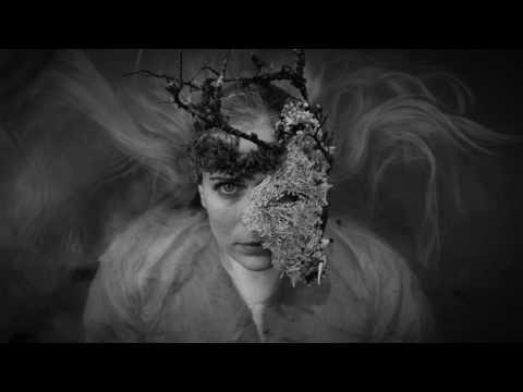 Indigorado - The Old Man (Official music video)