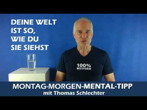 Mentaltipp Bewertungen erschaffen deine Welt von Thomas Schlechter