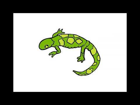 Как нарисовать Геккона. Раскраска Геккон для детей