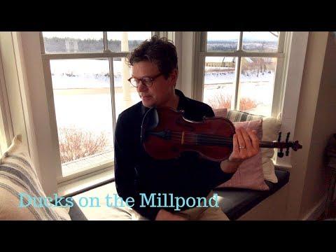 Round Peak Fiddle Tunes: Ducks on the Millpond