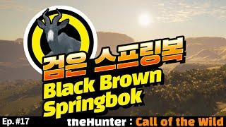 ◉ Ep.  #17 검은 스프링복   Black Bro…