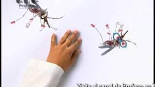 ProfecoTV 30.5 Tecnología Doméstica Profeco: Repelente de mosquitos