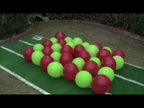 Super Bowl Predictions 2015 Balloon Popping Dogs Anastasia and Twinkie