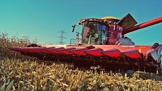 Kombajny Case IH 8230 Axial-Flow w mokrej kukurydzy '2017