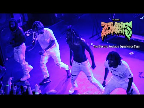 FLATBUSH ZOMBIES - PALM TREES | LIVE IN RALEIGH, NC (2014)
