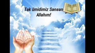 Allahım tək ümidimiz Sənsən (whatsapp status üçün)