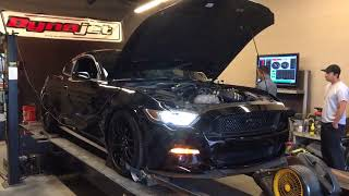 2017 Stage 2 Whipple 2.9L Supercharger - Performance Pack Mustang GT Dyno Run