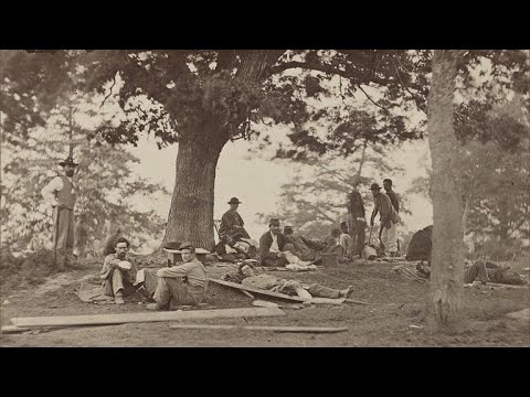 Civil War Witness Trees