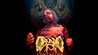 """Oceano - Quarantine (LYRICS) From the new album, """"Contagion"""""""